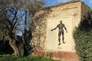 Tres ensayos sobre rock - Sergio Massarotto 2
